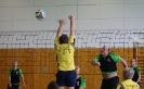 7. Framersheimer Volleyballturnier 2017